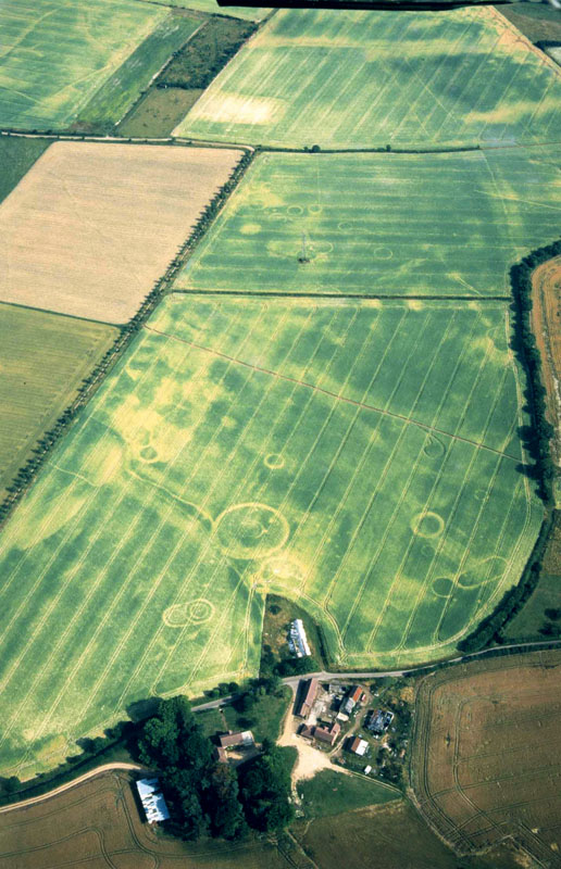 Aerial photo of the site at Damerham. NMR 21271/05 © English Heritage.NMR. Photographer: Damian Grady.